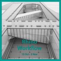 rhino-workflow-2-no-text